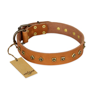 """Autumn Story"" FDT Artisan Leather Great Dane Collar with Old Bronze Look Studs"