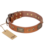 """Catchy Look"" FDT Artisan Decorated Tan Leather Great Dane Collar"