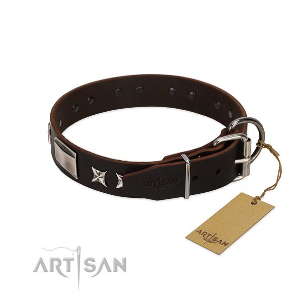 Easy wearing collar of leather for your stylish four-legged friend