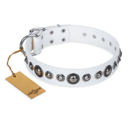 """Ice Age"" FDT Artisan White Studded Leather Great Dane Collar"