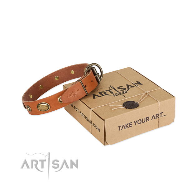 Durable embellishments on leather dog collar for your canine