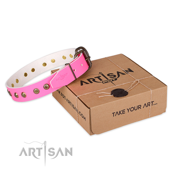 Reliable traditional buckle on natural genuine leather collar for your impressive pet