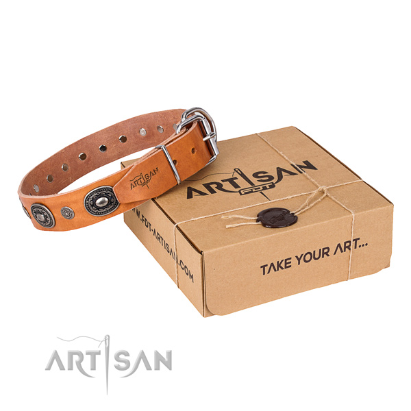 Reliable leather dog collar made for everyday use