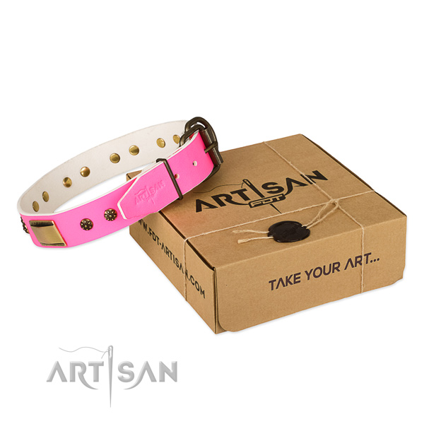Perfect fit leather collar for your beautiful canine