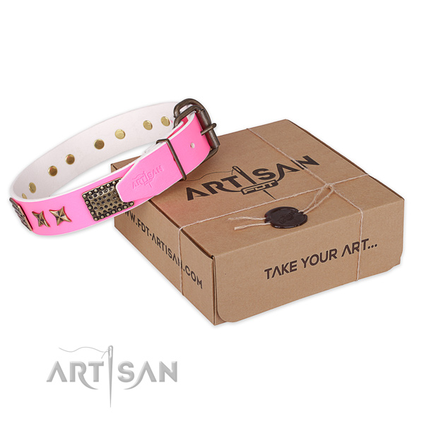 Reliable buckle on leather collar for your stylish canine