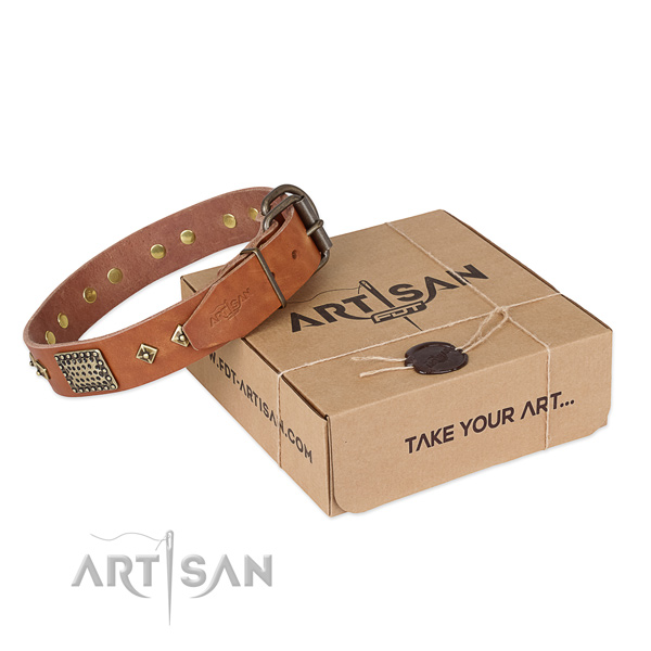 Unusual natural leather collar for your handsome canine