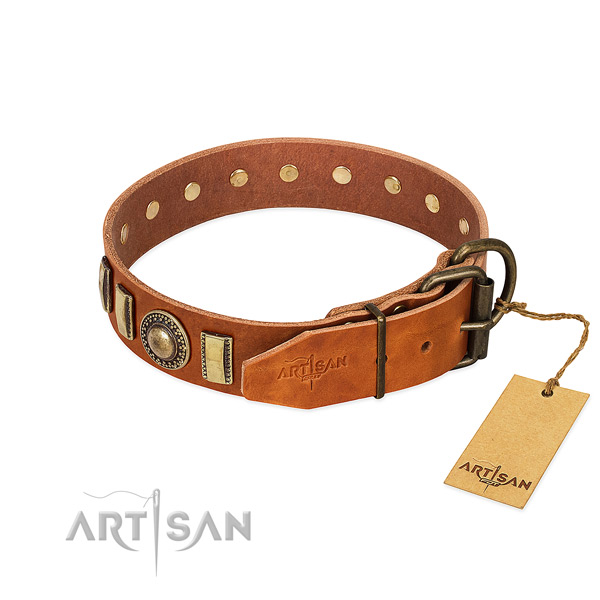 Easy adjustable full grain natural leather dog collar with corrosion resistant fittings
