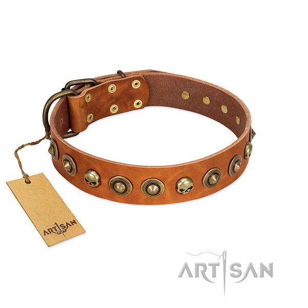 Leather collar with unique adornments for your dog