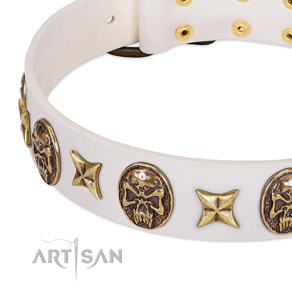 Stylish design dog collar handcrafted for your handsome four-legged friend