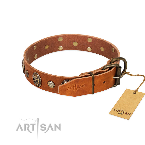 Rust resistant traditional buckle on genuine leather collar for everyday walking your doggie