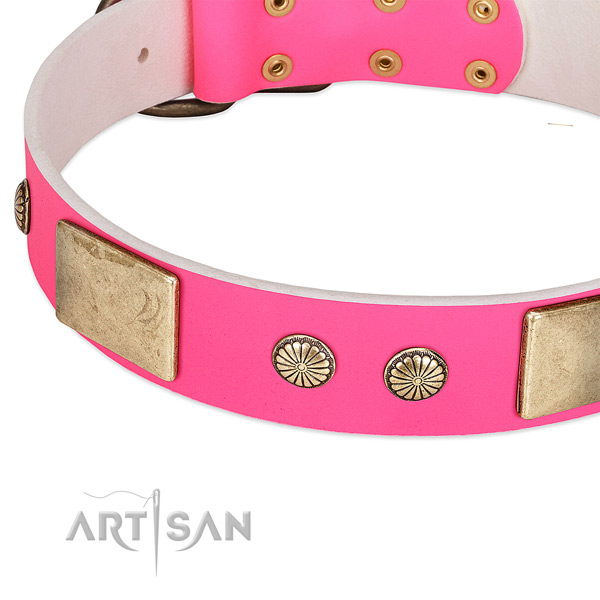Durable studs on full grain natural leather dog collar for your dog