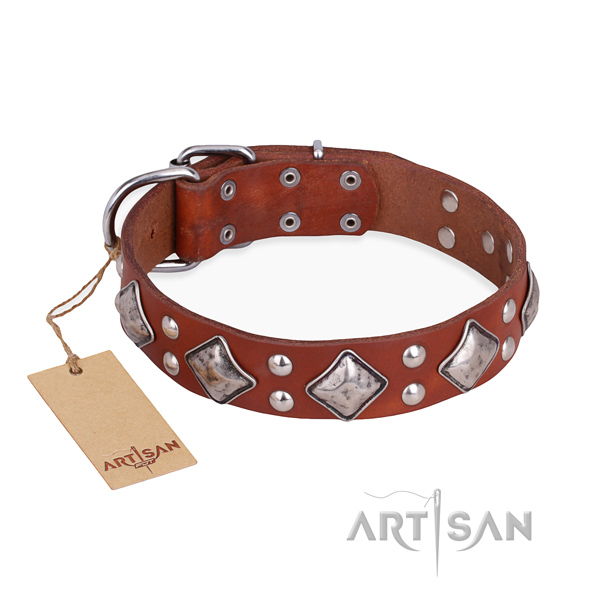 Handy use best quality dog collar with durable fittings