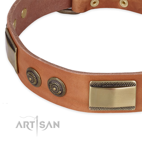 Strong studs on full grain leather dog collar for your four-legged friend