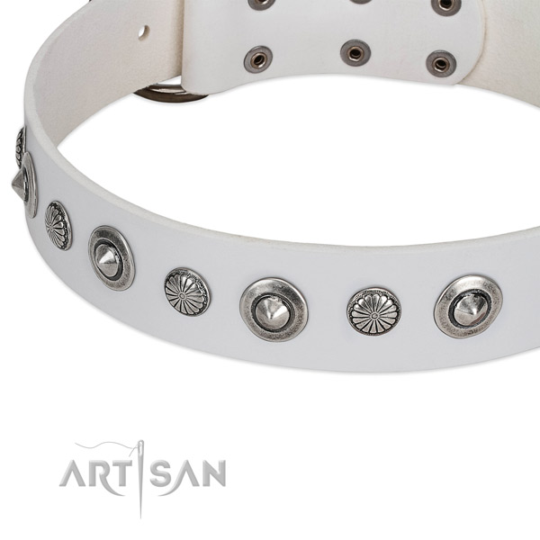 Full grain leather collar with rust resistant D-ring for your attractive four-legged friend