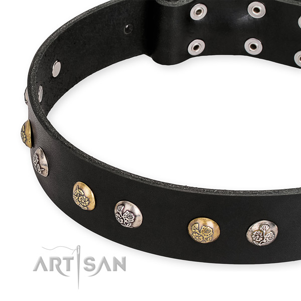 Natural genuine leather dog collar with unusual strong adornments