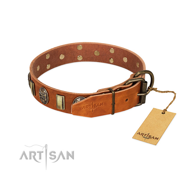 Genuine leather dog collar with rust-proof traditional buckle and studs