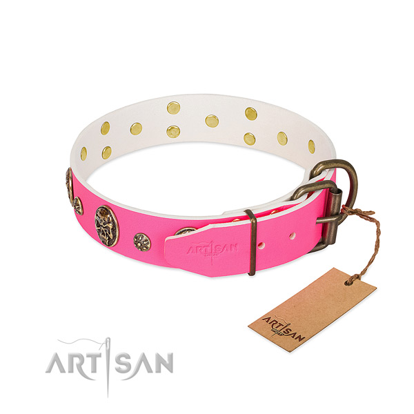 Strong buckle on leather collar for everyday walking your canine