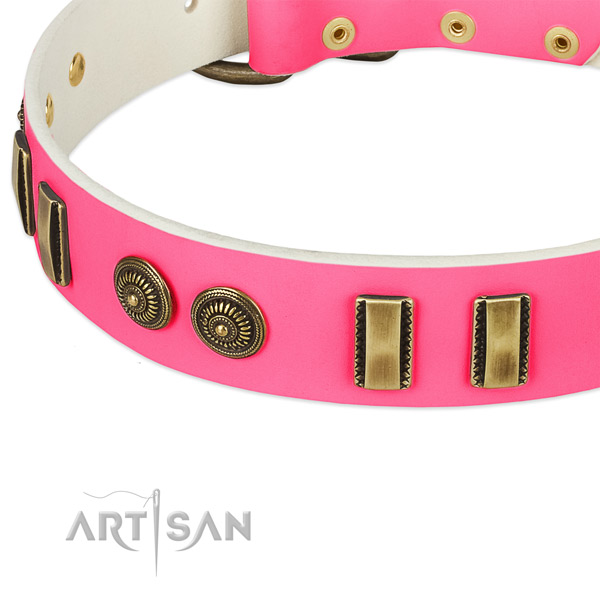 Corrosion resistant decorations on full grain leather dog collar for your pet