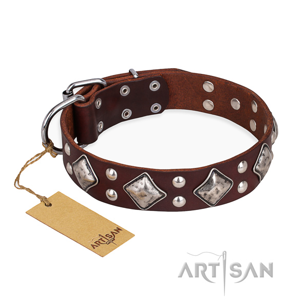 Walking stylish design dog collar with strong traditional buckle