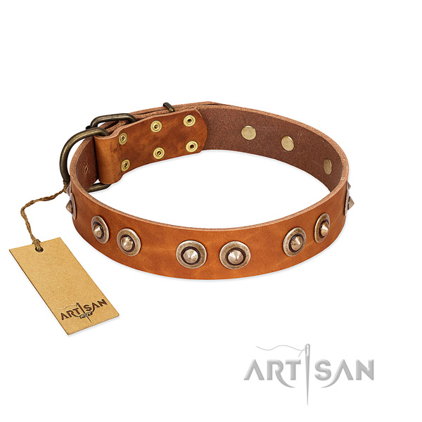 Durable D-ring on full grain leather dog collar for your four-legged friend