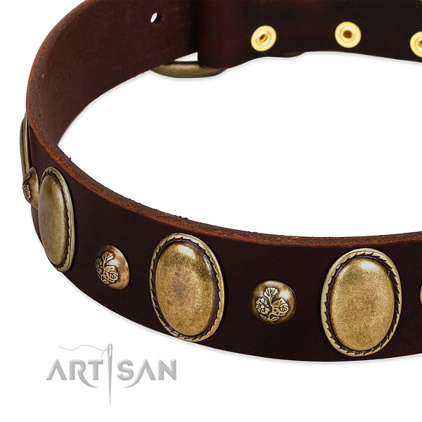 Full grain genuine leather dog collar with stunning studs