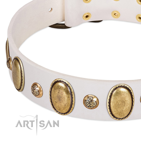 Genuine leather dog collar with amazing studs
