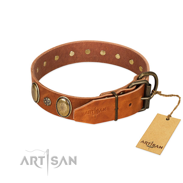 Daily walking top notch genuine leather dog collar