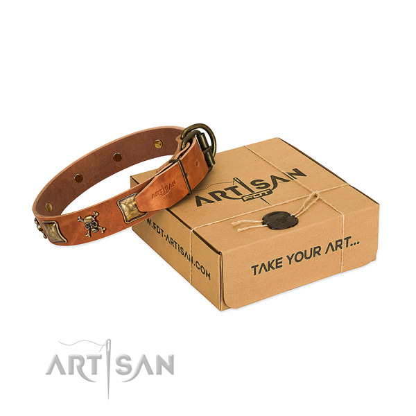 Trendy full grain natural leather dog collar with corrosion proof embellishments