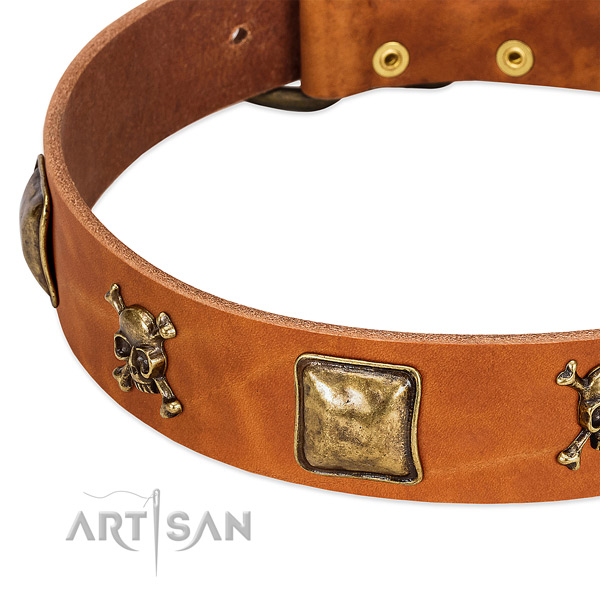 Significant adornments on genuine leather collar for your dog