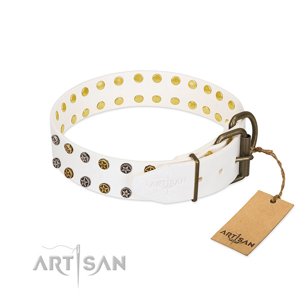 Natural leather collar with stylish embellishments for your dog
