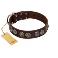 """Treasure Hunter"" FDT Artisan Brown Leather Great Dane Collar with Old-Bronze-like and Silvery Medallions"