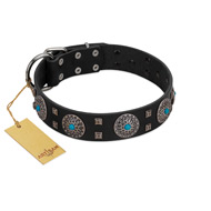 """Boundless Blue"" FDT Artisan Black Leather Great Dane Collar with Chrome Plated Brooches and Square Studs"