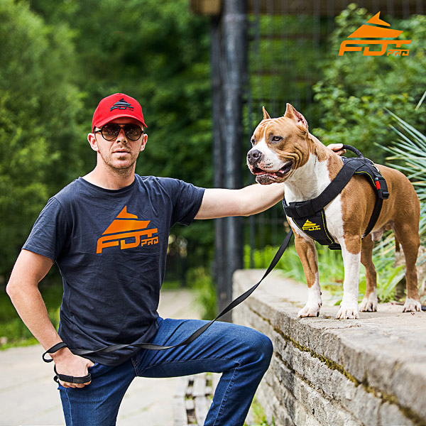 Men T-shirt of Finest Quality Cotton with Orange Logo for Dog Training