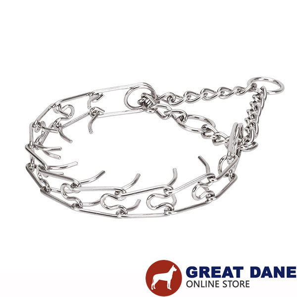 Large canines prong collar with stainless steel removable links