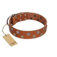 """Ancient Symbol"" Trendy FDT Artisan Tan Leather Great Dane Collar with Silver- and Gold-Like Studs"