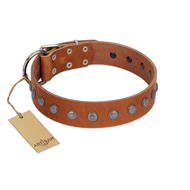 """Little Floret"" Fashionable FDT Artisan Tan Leather Great Dane Collar with Silver-Like Adornments"
