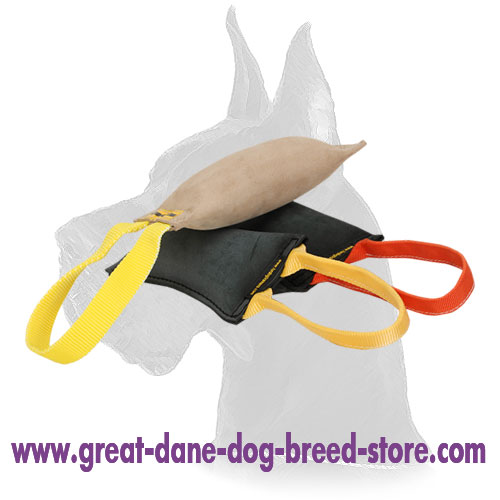 Bite Tug of Leather for Dog Training with Two Handles