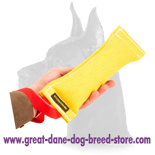 Bite Tug French Linen for Dog Training