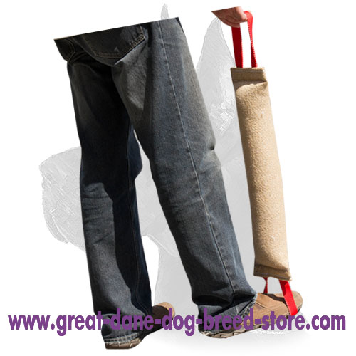 Durable Great Dane Bite Tug with Comfortable Handles