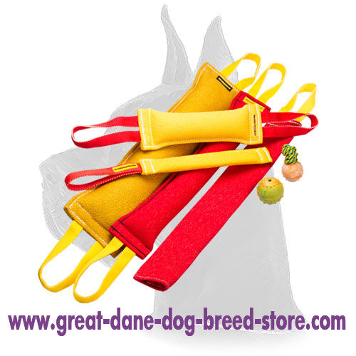 Great Dane Jute Bite Tug Set with a Gift