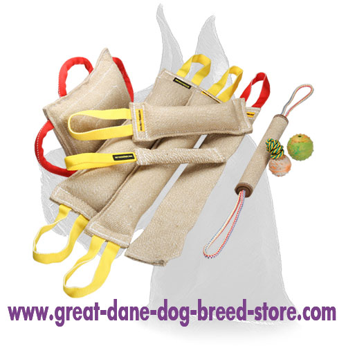 Bite Tug Set of Jute for Training Biting Skills