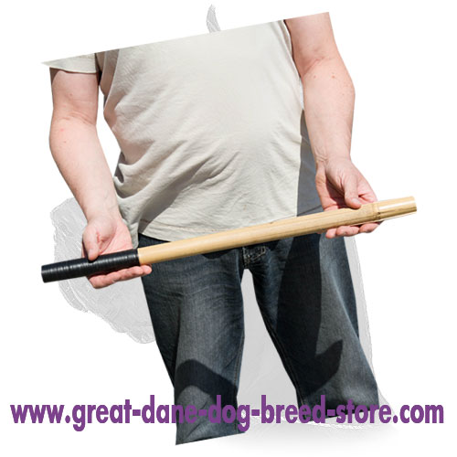 Training Bamboo Dog Stick