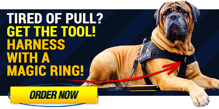 Nylon pulling dog harness