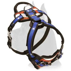 Beautiful Harness for your dog