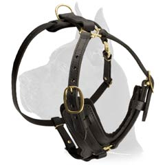 Great Dane Dog Harness with brass hardware