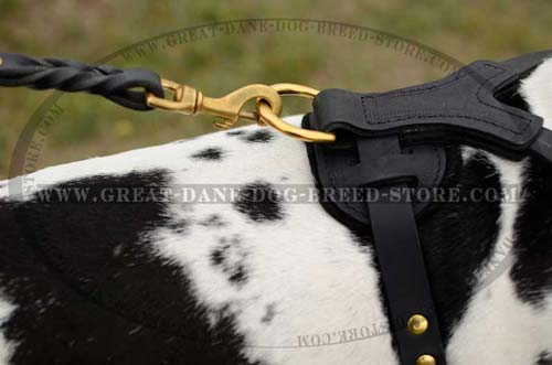 Exclusive Great Dane Dog Harness