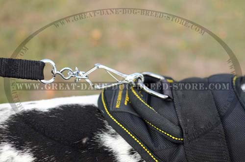 Exclusive Nylon Harness for Dane