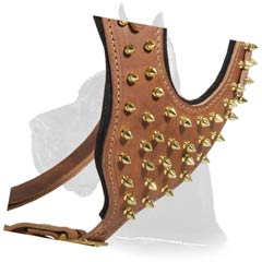 Great Dane Dog Harness with brass spikes