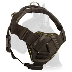 Great Dane Nylon Dog Harness with chest plate