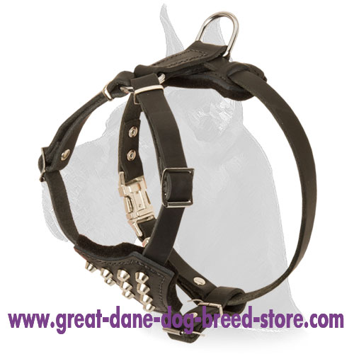 Leather Harness with handle to walk Great Dane